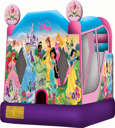 Disney Princess Deluxe 4 in 1 Combo