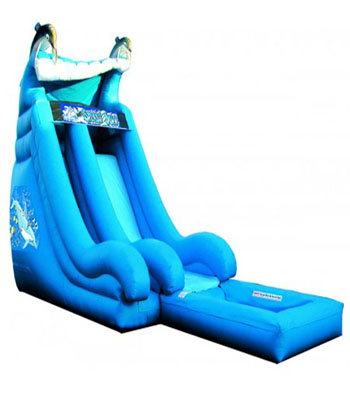 18' Super Splash Down Water Slide Dolphin